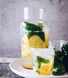 Detox Zitronen Wasser
